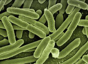 Leki recepturowe stosowane w infekcjach bakteryjnych skóry