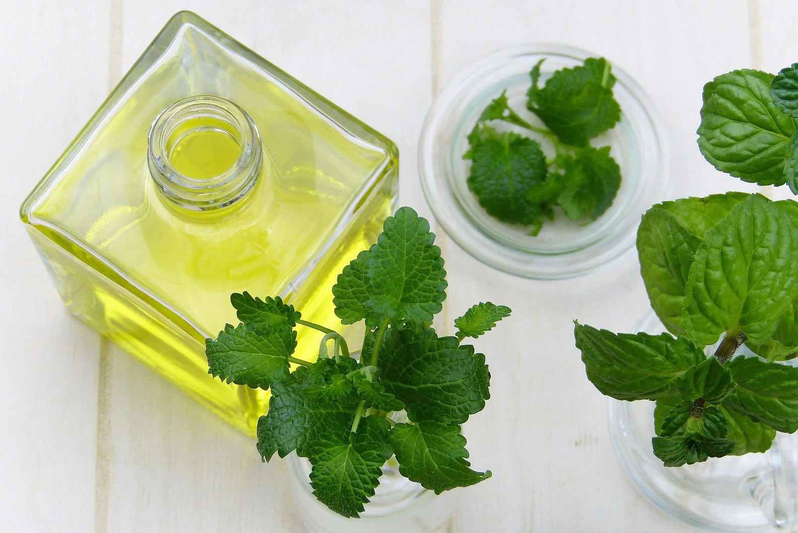 Woda miętowa jest wykorzystywana jako corrigens i adiuvans (fot. Shutterstock).