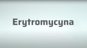 Erytromycyna jest polihydroksylaktonem należącym do antybiotyków makrolidowych zawierającym 14-członowy aglikon – erytronoid (fot. receptura.pl).
