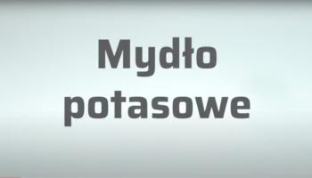 W XIX wieku mydło potasowe stosowano do leczenia chorób skóry (fot. receptura.pl).
