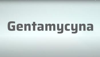 Gentamycyna wydalana jest z moczem w postaci niezmienionej i gromadzi się w proksymalnych komórkach kanalików nerkowych (fot. receptura.pl).